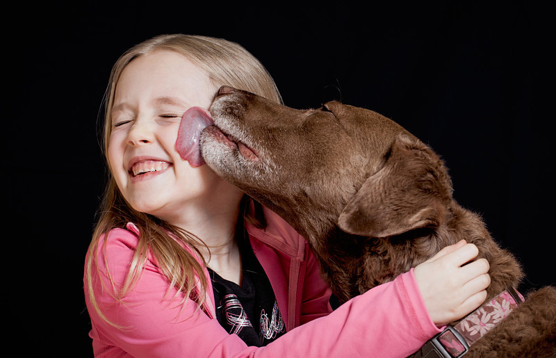 Cute child being licked by a pretty brown dog