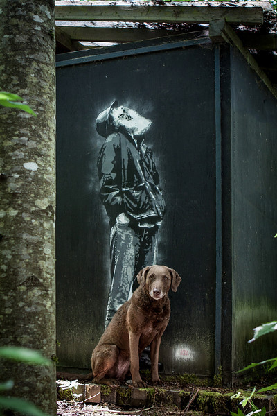 Photograph of a dog sitting in front of a painting on an outhouse
